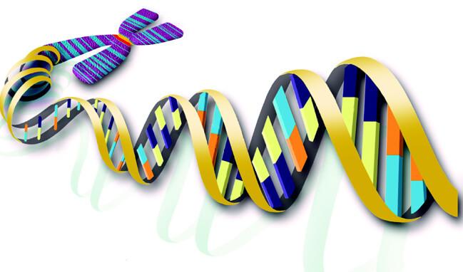Chuyên dịch tài liệu hóa sinh nhanh, giá rẻ tại hcm