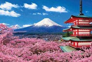 Top 05 Công Ty Dịch Thuật Tiếng Nhật Tại Đà Nẵng 7