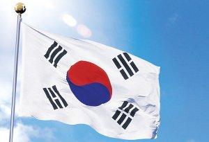 Top 5 Prestigious Da Nang Korean Translation Quotation Company