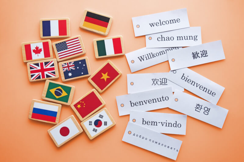 Cheap Quality Professional Document Translation Company