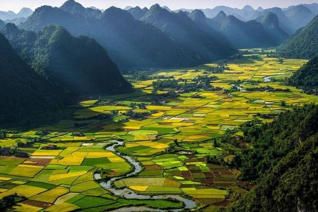 Tại Sao Bạn Nên Cần Dịch Vụ Bản Địa Hóa Nội Dung Sang Tiếng Việt Chuyên Nghiệp 1