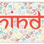 Những Sự Thật Thú Vị Về Tiếng Hindi 8