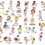 10 Động Từ Phổ Biến Trong Tiếng Trung Bạn Cần Biết Phần 1 10