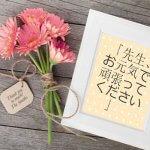 13 Từ Tiếng Nhật Không Thể Dịch Sang Tiếng Anh 14