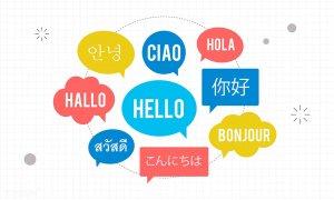 popular language on the website